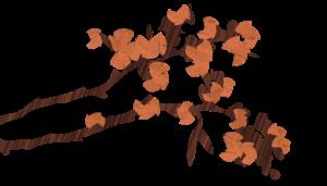 spring branch blooms
