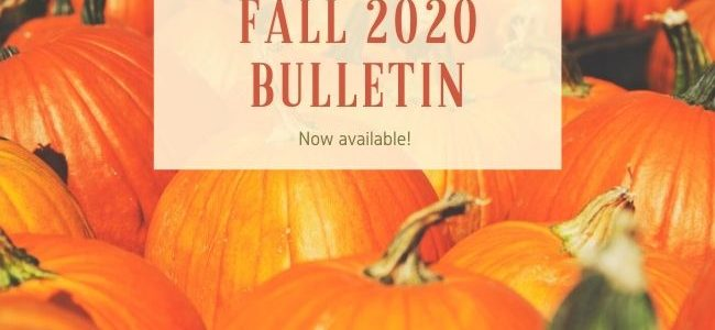 Fall 2020 Bulletin with Pumpkins in the background